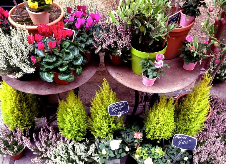 Flower Markets - Spring in Paris